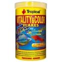 Tropical Vitality & Color
